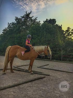 Baby Horsemanship Equitazione pedagogica