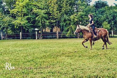 lezione equitazione horsemanship