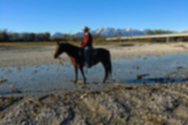Ranch Horse's Soul Trekking FVG
