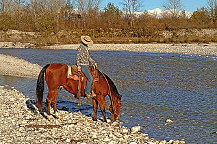 Ranch_Horse's_Soul_Asd_Foto5.jpg