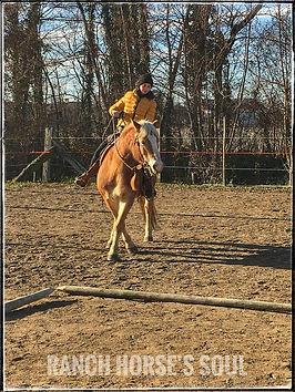Lezione equitazione Ranch Horse's Soul