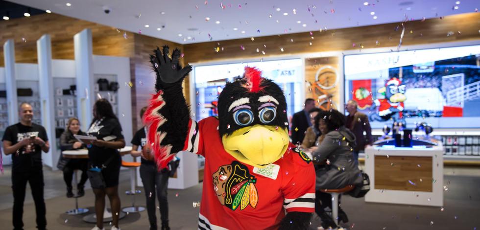 Chicago Bulls/ Blackhawks