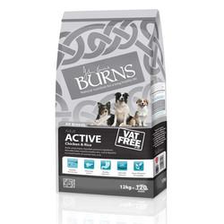 Burns-Active