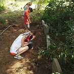 tag_houstonservemon_1402953750.jpg