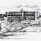 Zeichnung Mangold