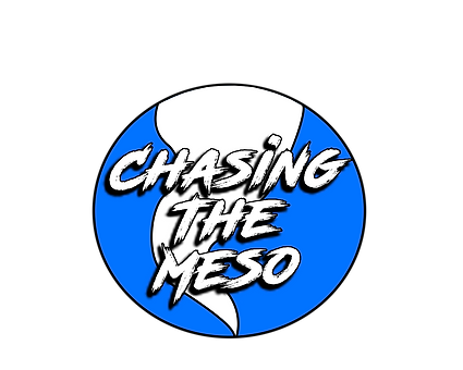 Chasing The Meso new logo.png