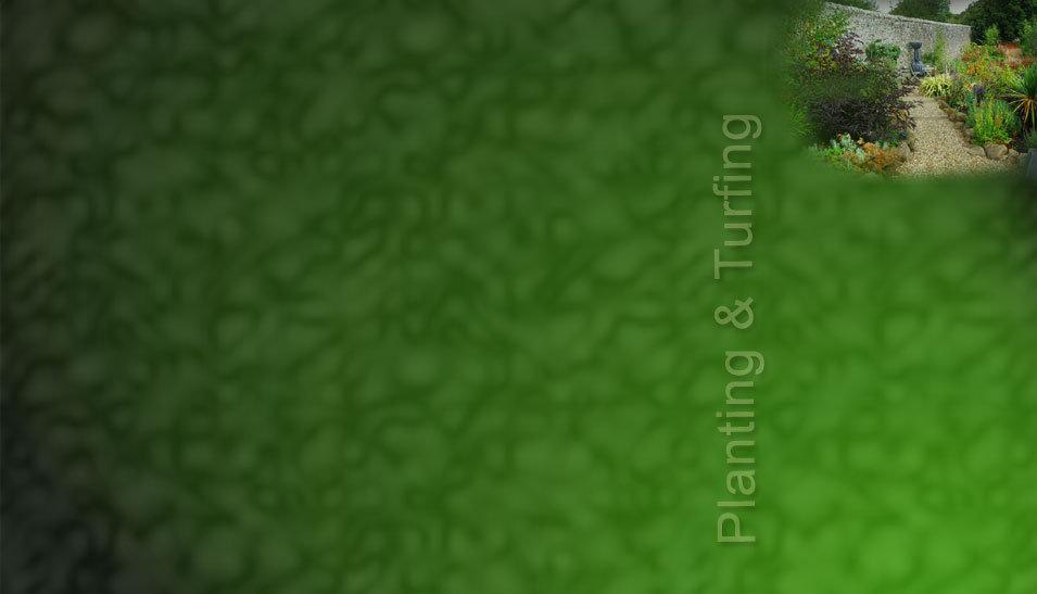 planting-portfolio.jpg