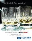 mipcom1.jpg