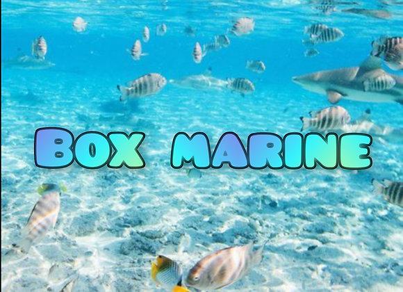 Box marine