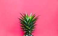 pinkpineapple.png