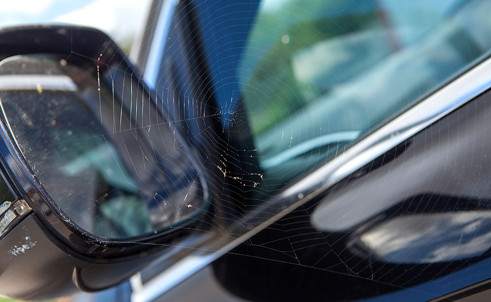cobweb, wing mirror, car cleaning, pressure wash you car, how to clean your car, wash your car
