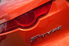 F Type Jaguar Low Res.jpg
