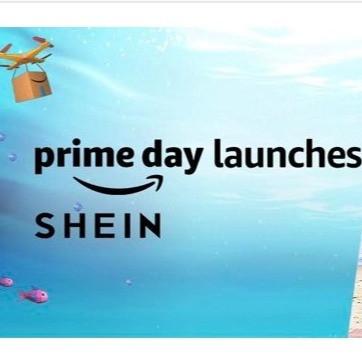 Shein to make a comeback in India