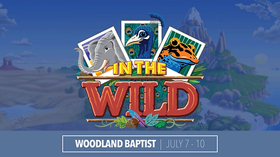 IN THE WILD VBS.png