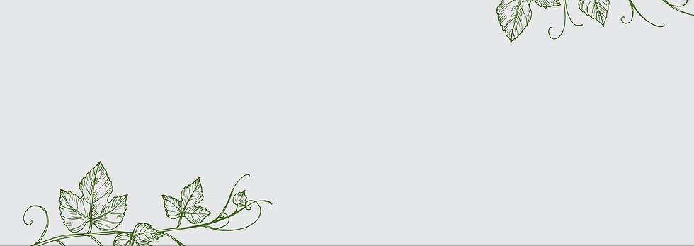 bg_green.png