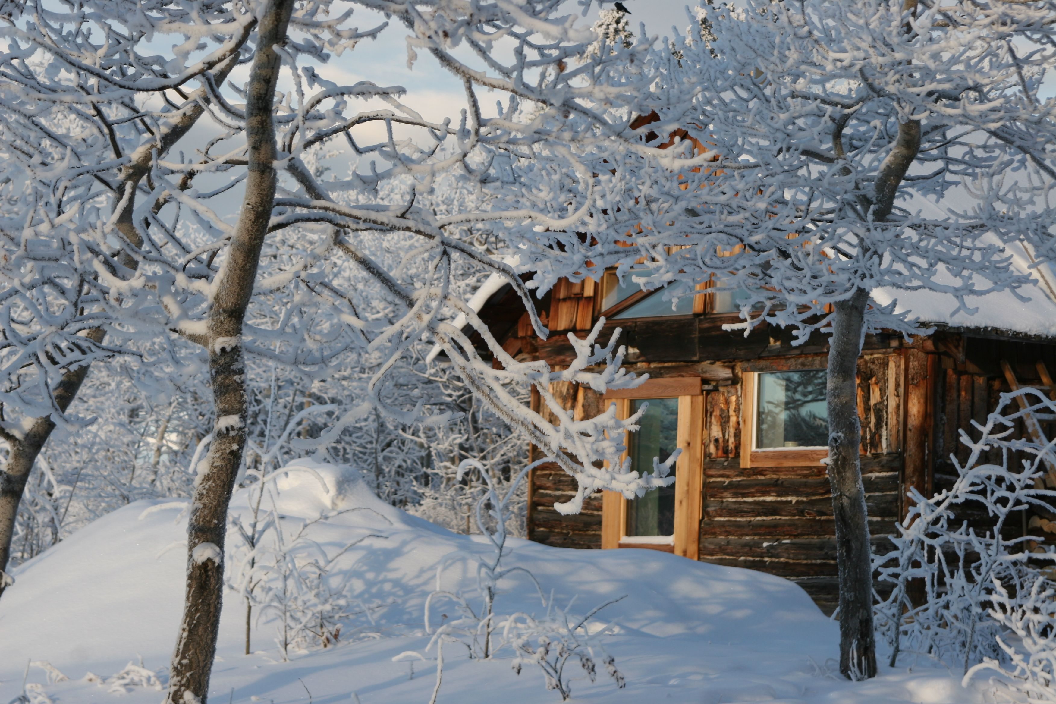 The Cosy Cabin in Winter.