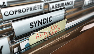 fonctions de syndic,syndicorinne