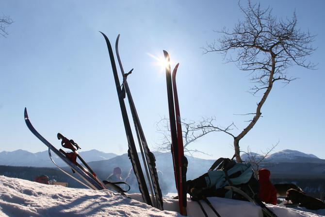 Spring Fever Ski Adventure