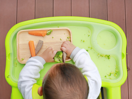 Welcome to Baby To Table Blog! Your evidence-based home for baby and toddler nutrition.