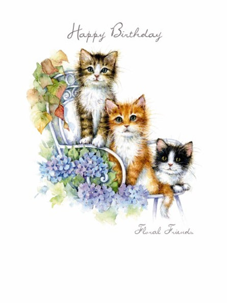 Cats & Dogs Birthday Cards Depicting the animals in funny places