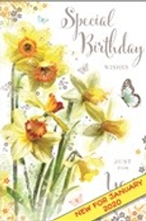 Special Birthday Wishes Just For You Female Birthday Card