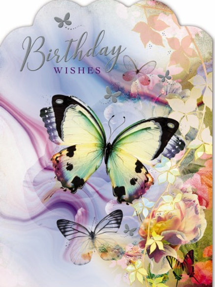 Female Birthday Card brightly Coloured Butterfly's on the front