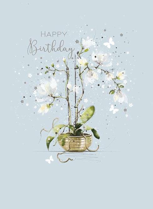 Happy Birthday Female Birthday Card