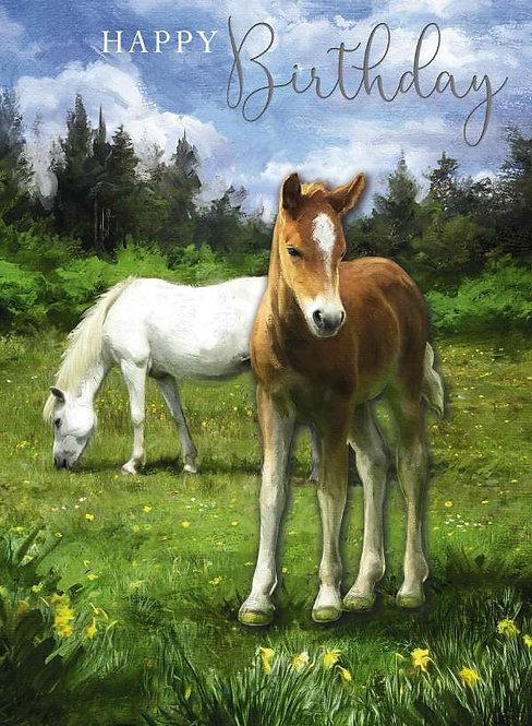 Happy Birthday Female Decoupage Card Of Horses