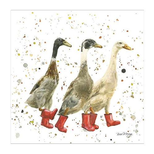 The Three Duckgrees