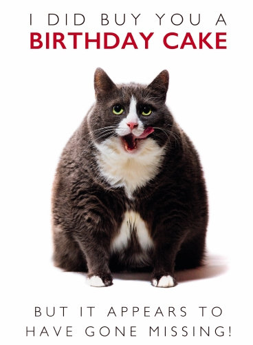 Funny Cat Design card