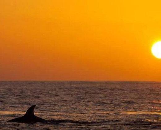 Amaneceres y  puestas de sol de ensueño en las islas similan