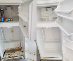 Before & After Fridge