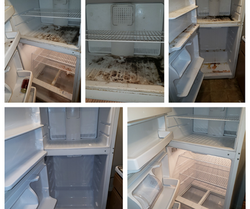 Before & After Fridge & Freezer