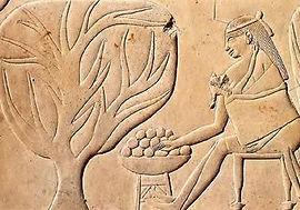 אירה קרן, קפסולות שליה, דולה, לידה טבעי