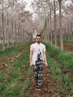 ג'ו גרינבאום - יער פאולינות- בית חנן.JPG