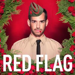 קמפיין RED FLAG - ג'ו גרינבאום.jpg