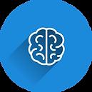 brain-2235771.png