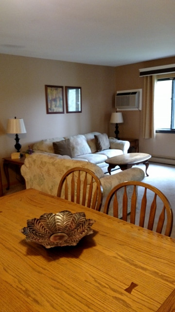 503 living area (360x640).jpg