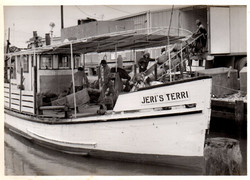 Jeri's Terri 1976