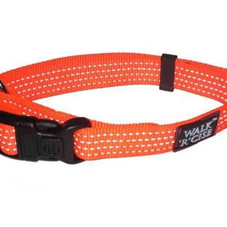 Orange Reflective Collar.jpg
