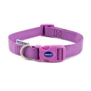 Plain Purple Collar.jpg