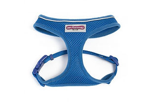 Blue Mesh Harness.jpg