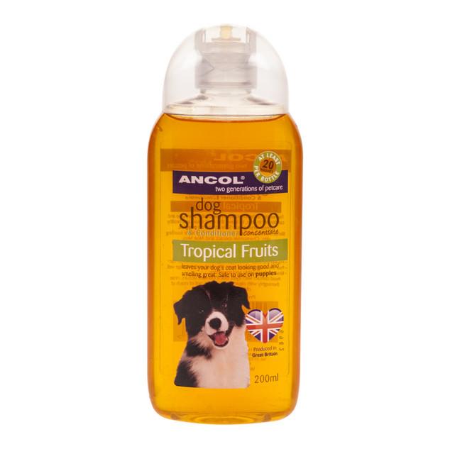Shampoo Tropical