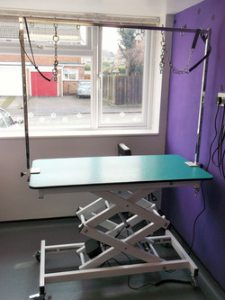 Extra large hydraulic grooming table