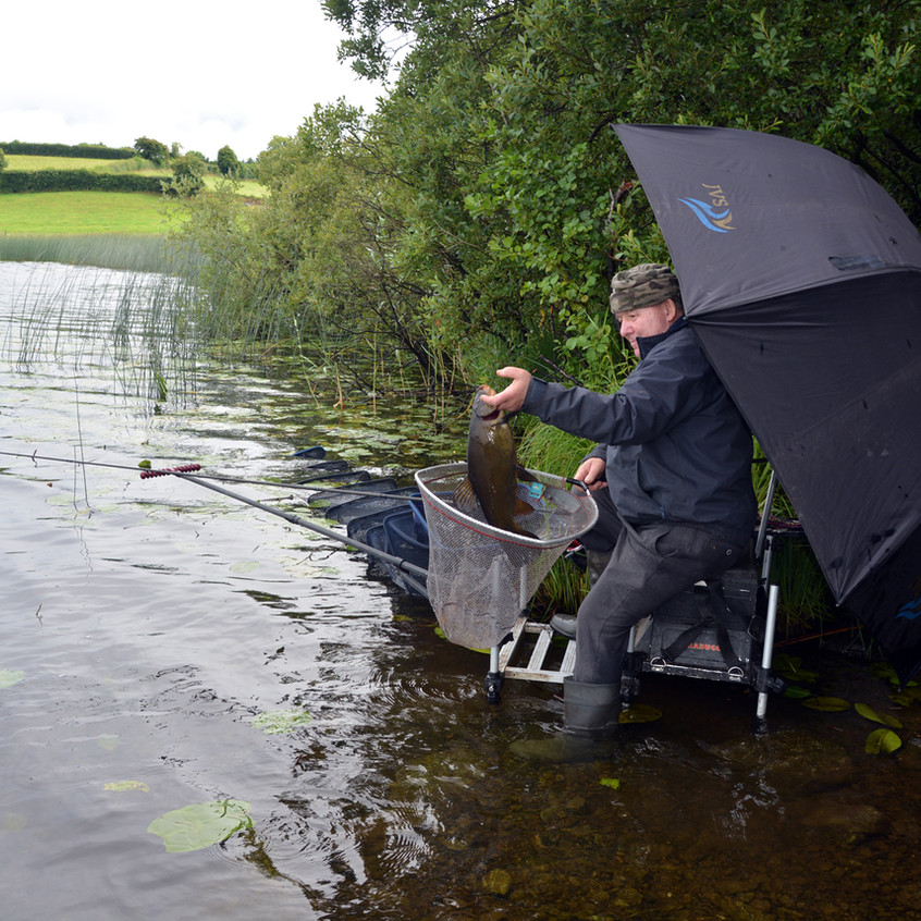 Paddy pulls fish from net