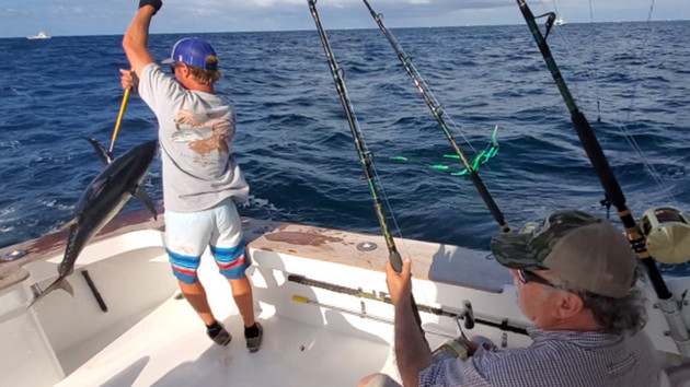 Spring Tuna Fishing on Fire for Anglers Heading Out from OBX or VA Beach - Incredible Action!