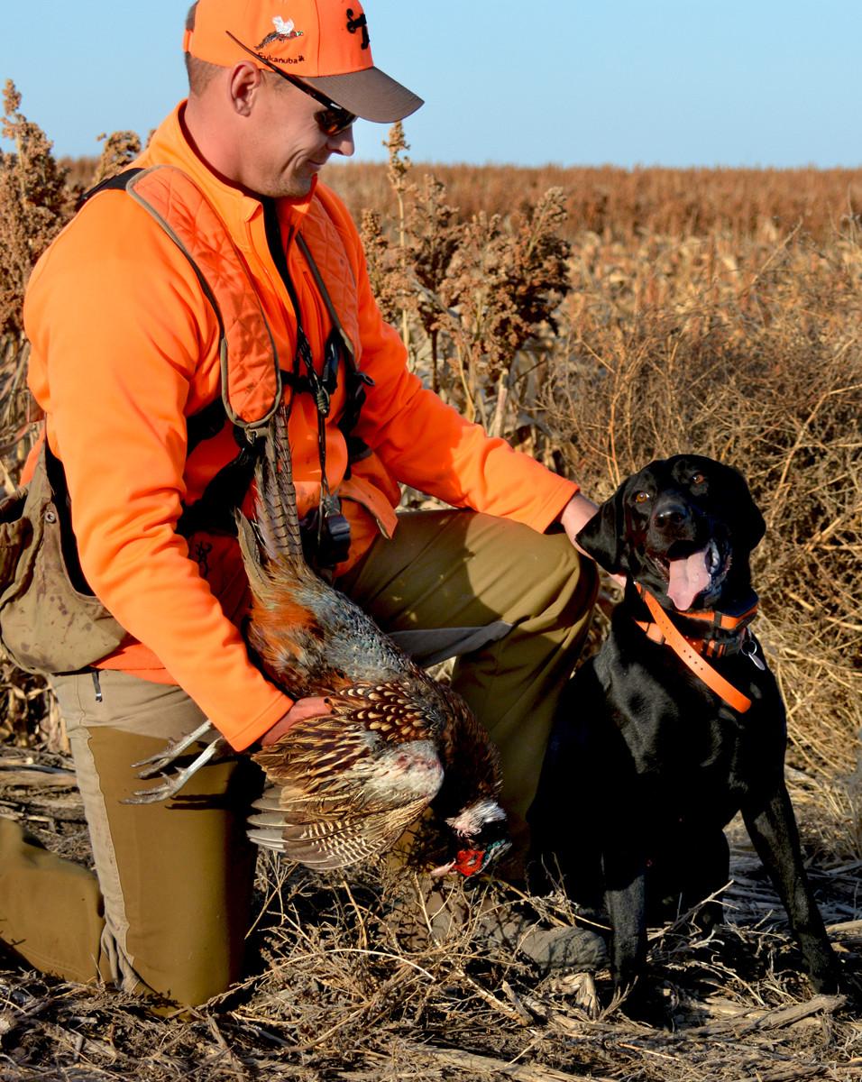 pheasant hunting South Dakota Scattergun Lodge