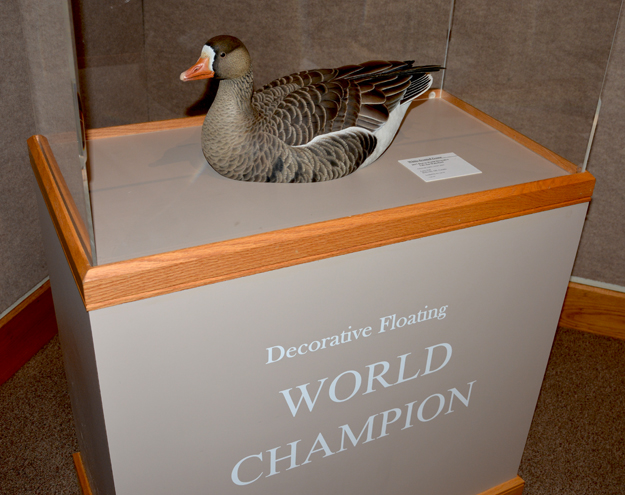 Ward Museum-World Champions Exhibits