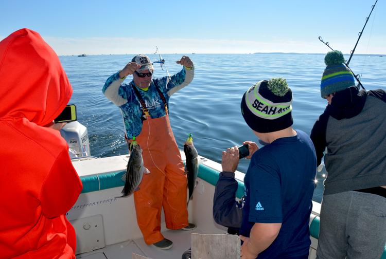 Chesapeake Bay rockfish double - how we roll