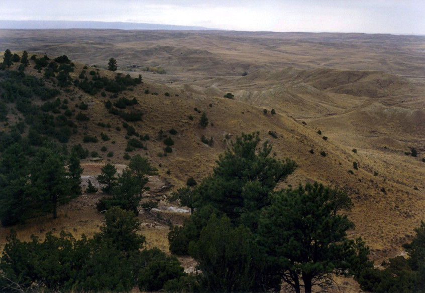 wyoming - big country - lots of game